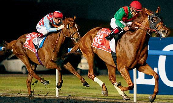 Dubai-Horse-racing